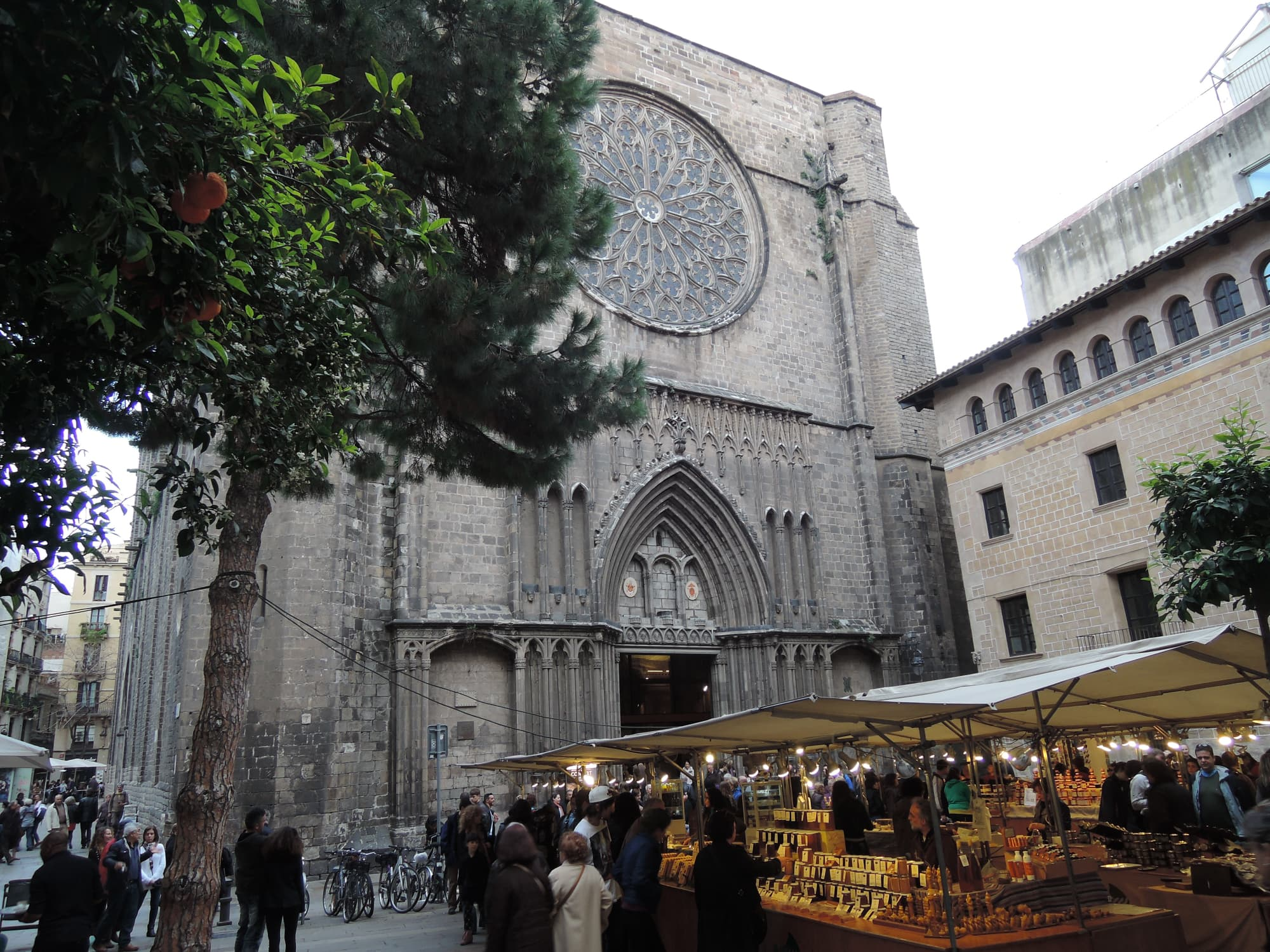 Gotoco in Barcelona