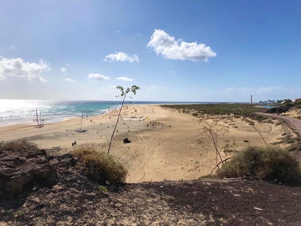 Fuerteventura mit Kindern Iberostar Gaviotas Park Strand