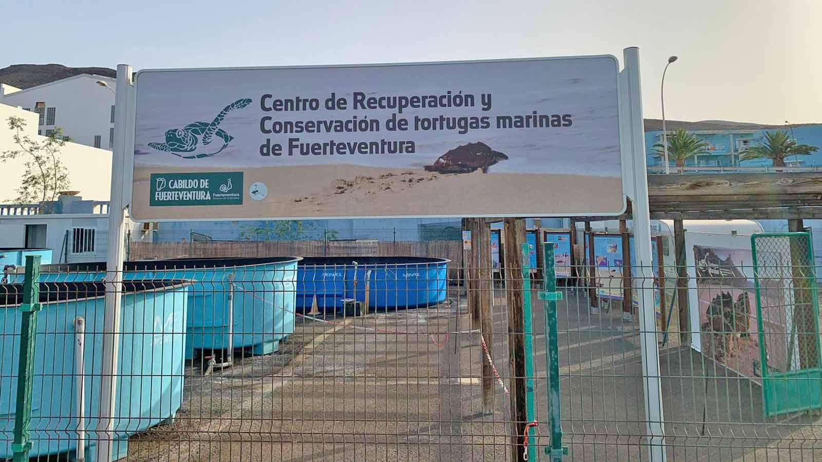 Schildkrötenstation-Fuerteventura
