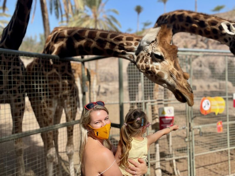 Urlaub auf Fuerteventura mit Kindern - Oasis Park mit Kindern