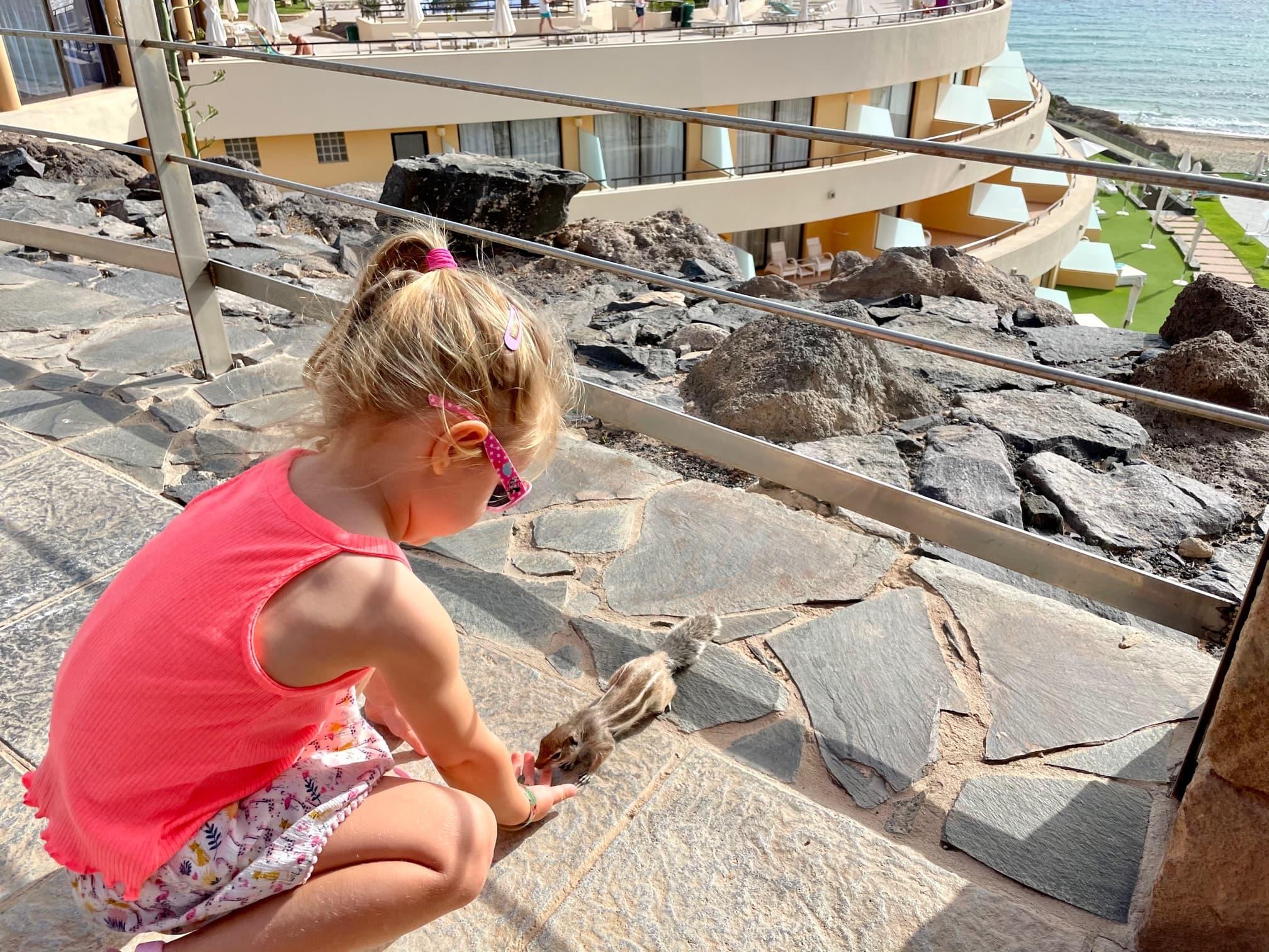 Urlaub auf Fuerteventura mit Kindern