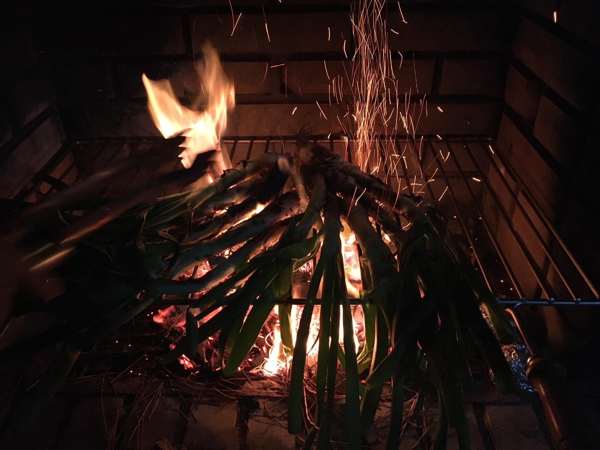 calcots-gegrillte-zeibeln-romesco-sauce-katalonien-barcelona-winter (3)